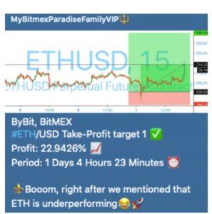 bitmex profit