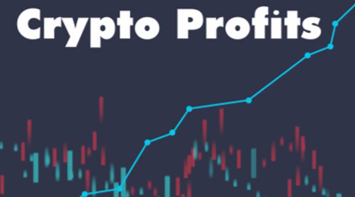crypto profits