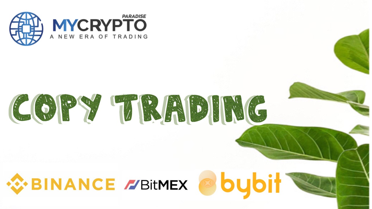 What is copy trading and why it is the best choice for beginners!
