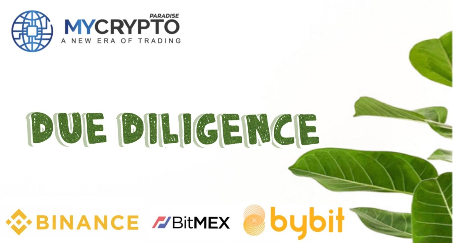 Importance of due diligence in your crypto portfolio