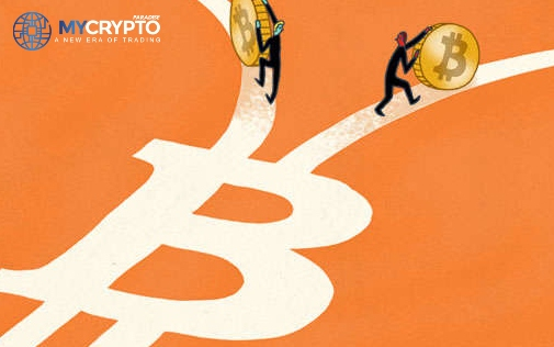 Bitcoin Cash price plunges as it split into two new Blockchains