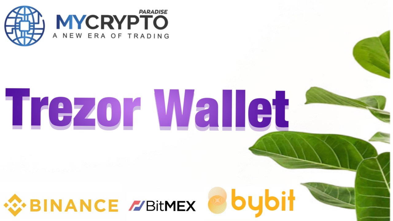 What is a Trezor Wallet and how does it work?