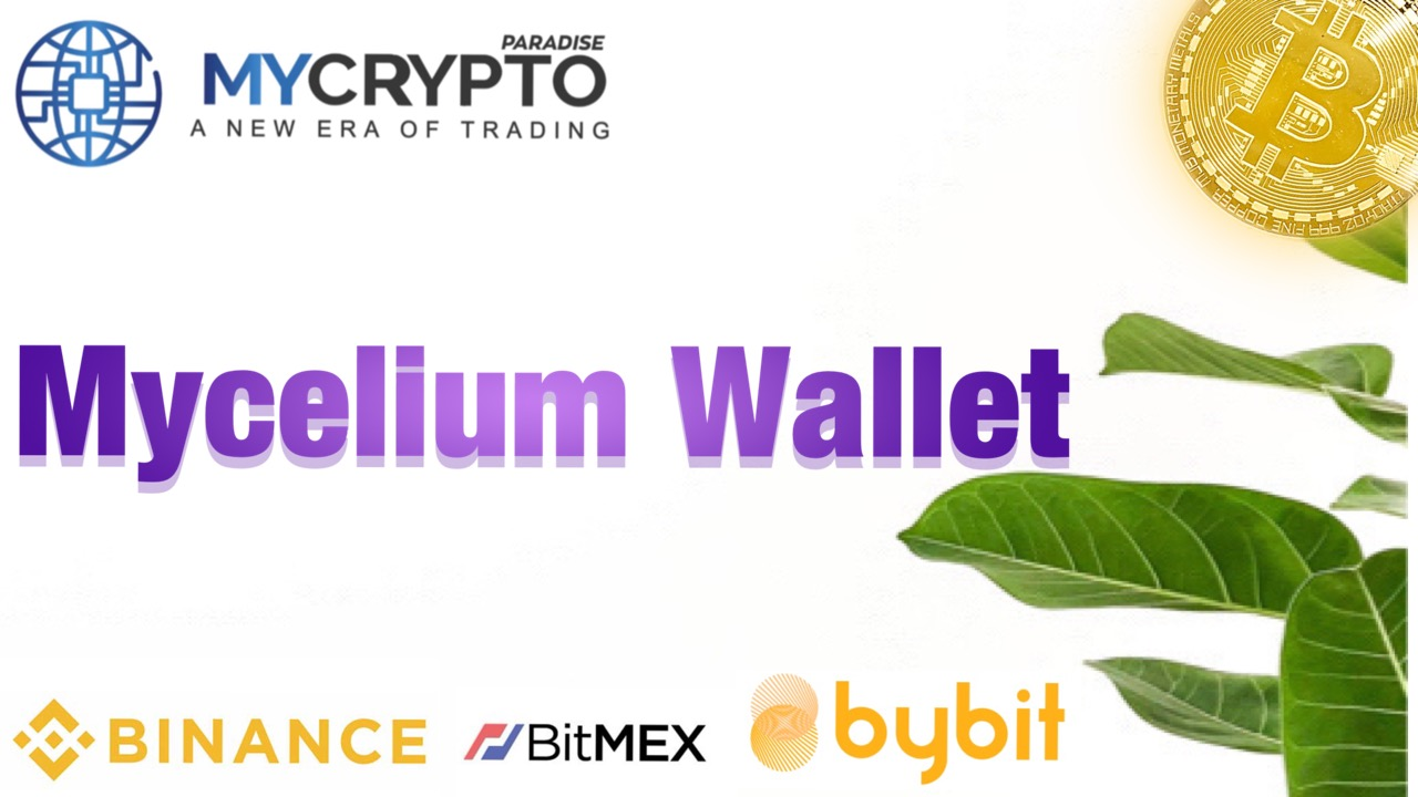 What is Mycelium Wallet? Everything you need to know about Mycelium Wallet